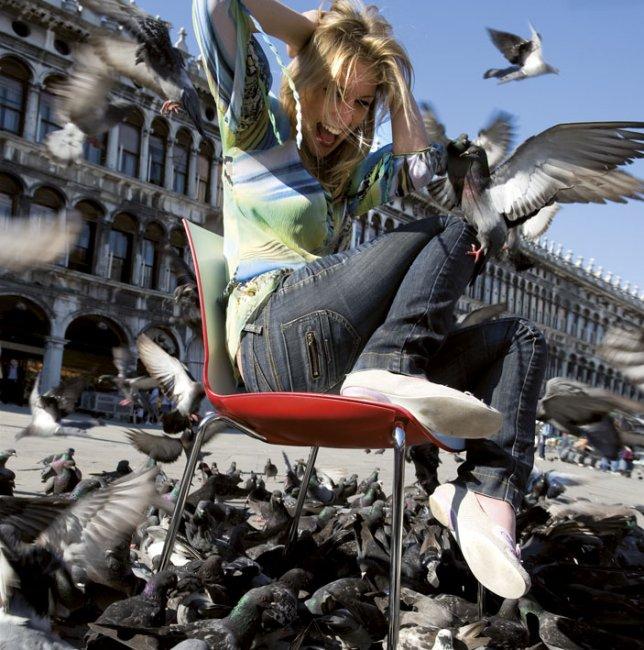 Now venezia 13 1333012763011418000 arredamento design for Arredamento venezia